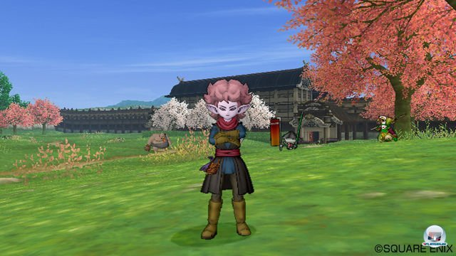 Screenshot - Dragon Quest X Online (Wii) 2277612