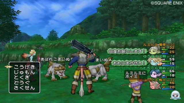 Screenshot - Dragon Quest X Online (Wii) 2368787