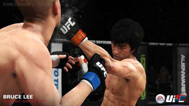 Screenshot - EA Sports UFC (PlayStation4)