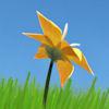 Erfolge zu Flower